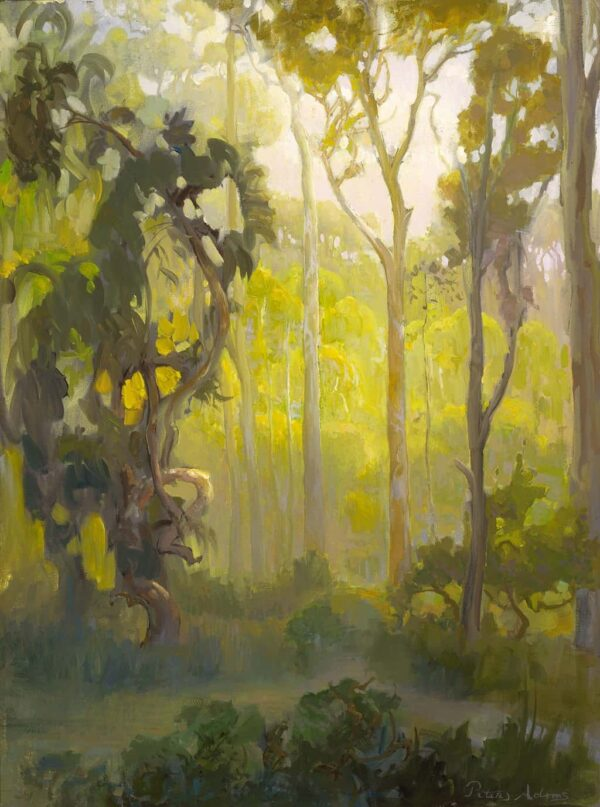 """American Legacy Fine Arts presents """"Afternoon in the Eucalyptus Forest"""" a painting by Peter Adams."""