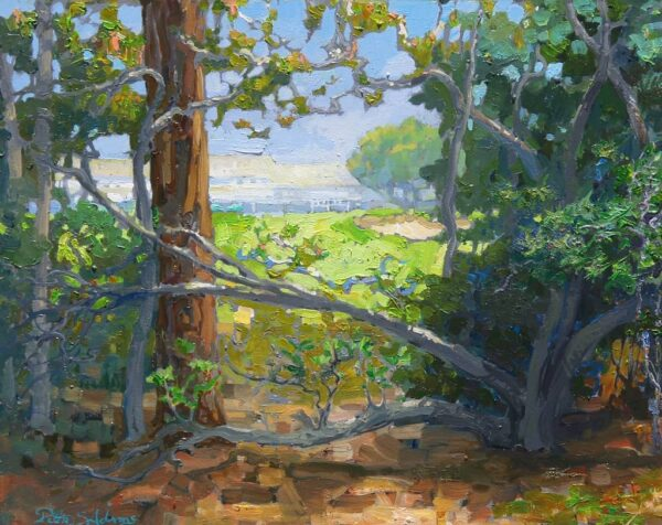 """American Legacy Fine Arts presents """"Hidden View"""" a painting by Peter Adams."""