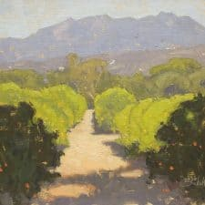 """American Legacy Fine Arts presents """"Sunlit Orchard"""" a painting by Dan Schultz."""