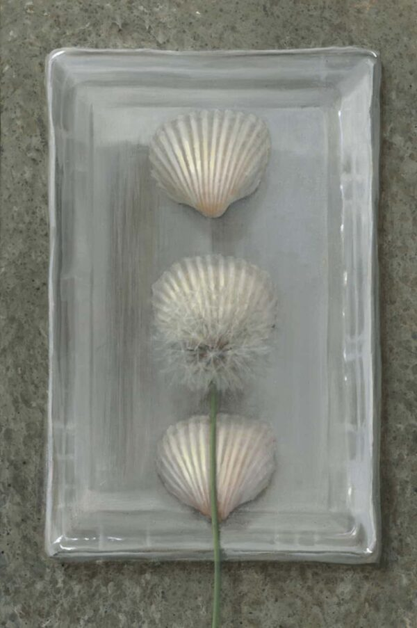 """American Legacy Fine Arts presents """"Shells with Dandelion"""" a painting by Kate Sammons."""