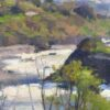 """American Legacy Fine Arts presents """"Coastal Spring"""" a painting by Jim McVicker."""