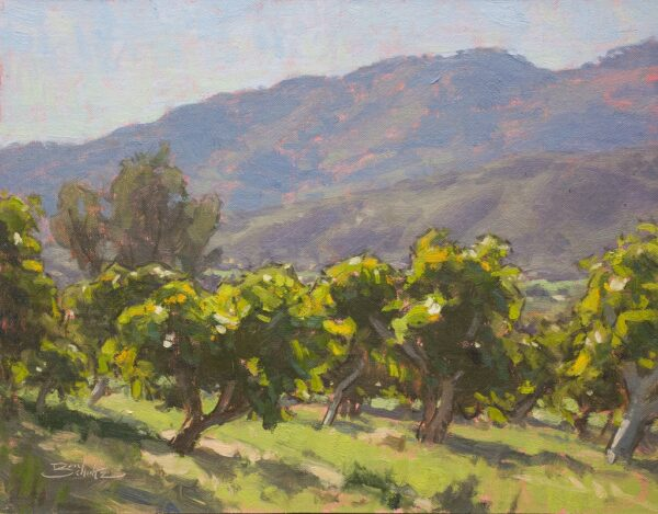 """American Legacy Fine Arts presents """"Avocado Orchard"""" a painting by Dan Schultz."""