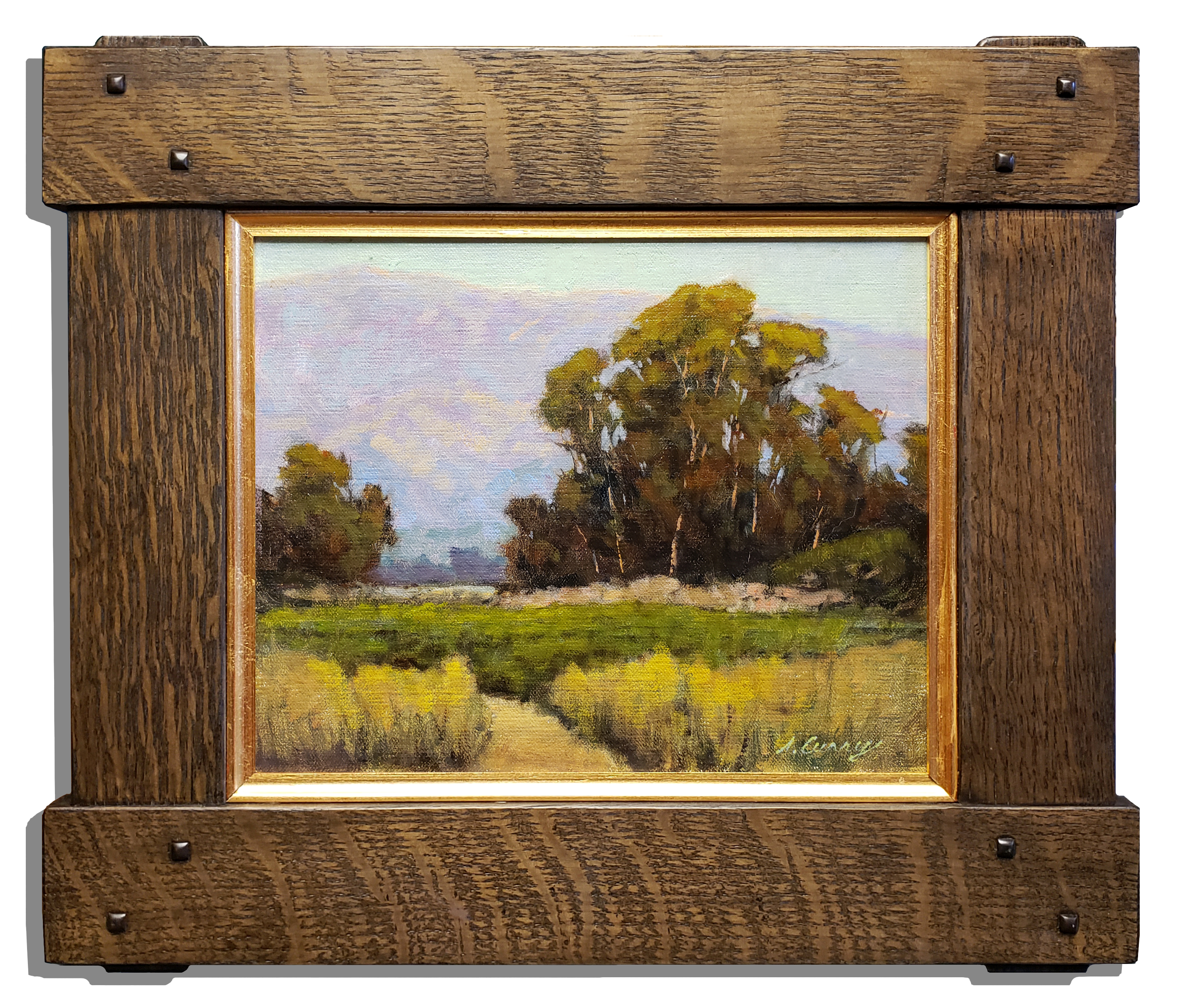 """American Legacy Fine Arts presents """"Carpenteria Foothills"""" a painting by Steve Curry."""