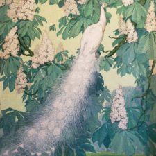 """American Legacy Fine Arts presents """"White Peacock"""" a painting by Jessie Hazel Arms Botke."""